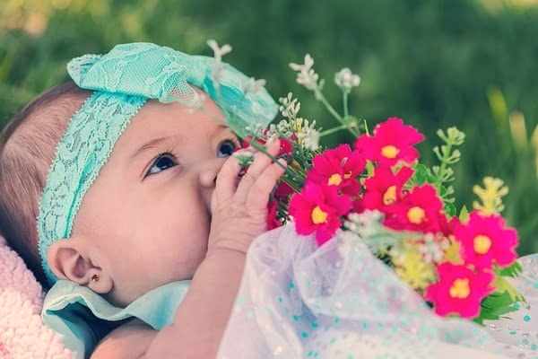 妊娠,7ヶ月,赤ちゃん,人気,おすすめ,ランキング