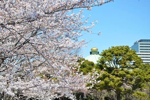 無料子供遊び場東京人気おすすめランキング